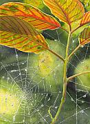 Dew Painting Posters - Dew Drop Poster by Catherine G McElroy