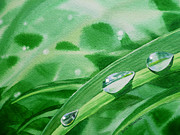 Leaf Paintings - Dew Drops by Irina Sztukowski