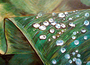Holly Suzanne Filbert - Dewdrops
