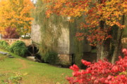 Historic Site Posters - Dexter Grist Mill Autumn Poster by John Burk