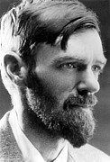 Author Metal Prints - D.h. Lawrence Metal Print by Everett