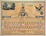 Teaching Guide Posters - Diagram of the Federal Government and American Union Poster by Pg Reproductions