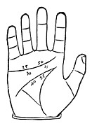 Palmistry Metal Prints - Diagram Used In Palmistry, 16th Century Metal Print by Middle Temple Library