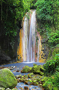 Natural Pool Photos - Diamond Falls- St Lucia by Chester Williams