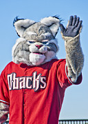 Mascot Photo Prints - Diamondbacks Mascot Baxter Print by Jon Berghoff