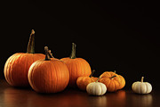 Jack O Lantern Photos - Different sized pumpkins and gourds on dark  by Sandra Cunningham