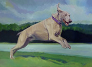 Dog In Lake Prints - Digby Jumps For Joy Print by L V Fry