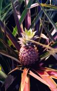 Pineapple Prints - Digital Art Tropical series  Print by Pierre Leclerc
