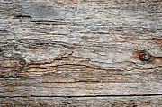 Wooden Prints - DIGITAL BARK texture as if digitised contours on natural wood Print by Andy Smy