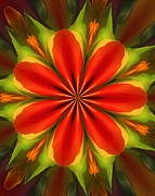 Modernism Prints - Digital Flower 050712 Print by David Lane