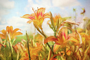Brushstroke Prints - Digital painting of orange daylilies Print by Sandra Cunningham