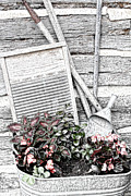 Log Cabin Digital Art Prints - Digital Sketch Wash Tub and Flowers Print by Linda Phelps