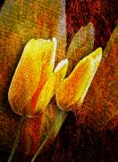Pink Gold Flora Prints - Digital Tulips Print by Svetlana Sewell