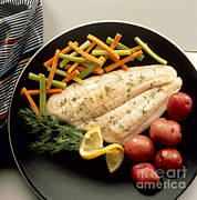 Low-calorie Prints - Dilled Fish Fillet Print by Photo Researchers