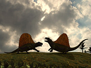 Survival Digital Art Prints - Dimetrodon Fight Over Territory Print by Walter Myers