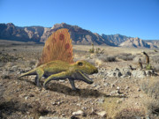 Dinosaur Illustration Posters - Dimetrodon In The Desert Poster by Frank Wilson