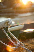 Dinghy Photos - Dinghies by Robert Clifford
