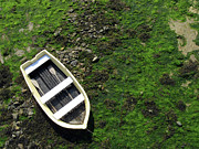 Low Tide Posters - Dinghy Beached At Low Tide Poster by KAPGsy