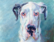 Great Dane Paintings - Dinos Spotted Nose by Kimberly Santini