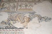 Dionysus Mosaic Mona Lisa Of The Galilee Print by Ilan Rosen