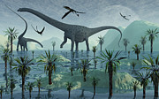 Flying Birds Prints - Diplodocus Dinosaurs Print by Mark Stevenson