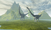 Roaming Digital Art Posters - Diplodocus Dinosaurs Walk Together Poster by Corey Ford