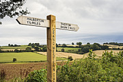Signpost Prints - Directional Signpost in the Country Print by Jon Boyes