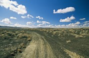 Dirt Roads Photos - Dirt Road Across Volcanic Desert by David Edwards