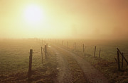 Dirt Road Posters - Dirt Road, Fence And Sun Shining Poster by Konrad Wothe