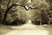Dirt Roads Photo Originals - Dirt Road Home by Sean Cupp