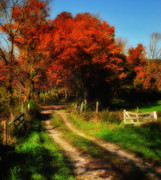 New England Fall Photos Prints - Dirt Road to Anyplace Print by Thomas Schoeller