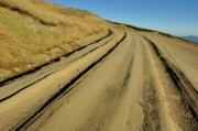 Country Dirt Roads Photo Prints - Dirt road winding Print by Sami Sarkis