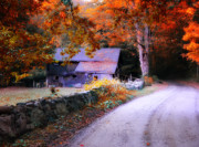 Scenic Litchfield Hills Prints - Dirt Roads are Down to Earth Print by Thomas Schoeller