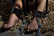 Cuffed Posters - Dirty feet cuffed with a chain and irons Poster by William Langeveld