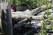 Paul SEQUENCE Ferguson             sequence dot net - Disaster 4