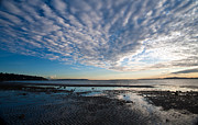 Puget Sound Photos - Discovery Park Beach Sunset by Mike Reid