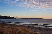 Puget Sound Art - Discovery Park Vista by Mike Reid