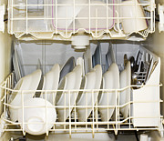 Home Appliance Posters - Dishes in a Dishwasher Poster by David Buffington