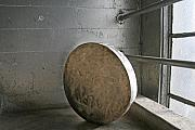 Still Life Sculptures - Disk  by Linda Raynsford