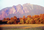 Farming Digital Art - Distant Cattle Grazing Beneath Cascade Mountains 1 by Steve Ohlsen