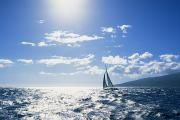 Sports Art Photo Metal Prints - Distant View Of Sailboat Metal Print by Ron Dahlquist - Printscapes
