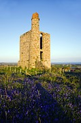 Hyacinthoides Non-scripta Posters - Disused Mine Engine House, Cornwall Poster by Dr Keith Wheeler