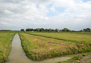 Eemnes Prints - Ditches in the countryside in summer Print by Jan Marijs