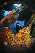Wreck Prints - Diver Explores The Liberty Wreck, Bali Print by Todd Winner