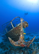 Caribbean Sea Framed Prints - Divers Visit The Pelicano Shipwreck Framed Print by Karen Doody