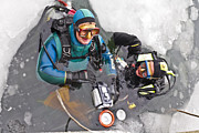 At Work Metal Prints - Diving in the Ice Metal Print by Heiko Koehrer-Wagner