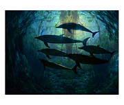 Dolphins Digital Art Metal Prints - Diving With Digital Dolphins in the Rainforests of Eternity Metal Print by Matt Ahearn