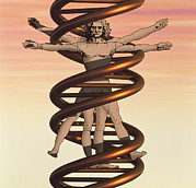 Limbs Framed Prints - Dna And Human Body Framed Print by Laguna Design