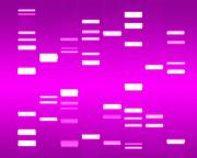 Genetic Prints - DNA magenta Print by Michael Tompsett