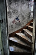 Old Abandoned Houses Photos - Do You Dare by Emily Stauring